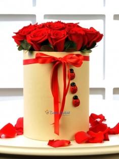 Uğurlu Güllerim