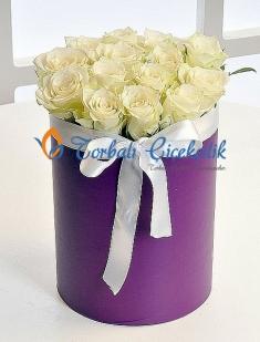 Kutu çiçek Beyaz